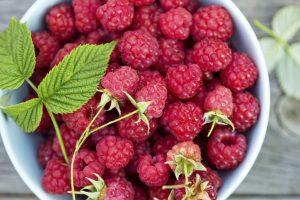 Raspberries for cholesterol